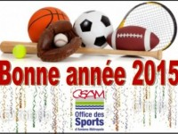 VOEUX 2015 OSAM