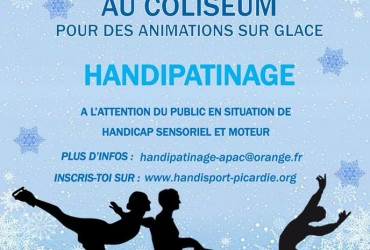 Journée handipatinage